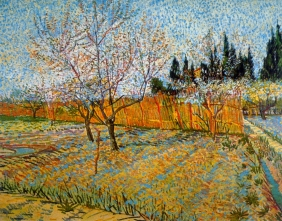 Stampe famose Vincent Van Gogh PESCHI IN FIORE